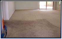 Phoenix Carpet Cleaning