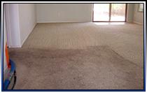 Phoenix Tile Cleaning Phoenix Carpet Cleaning